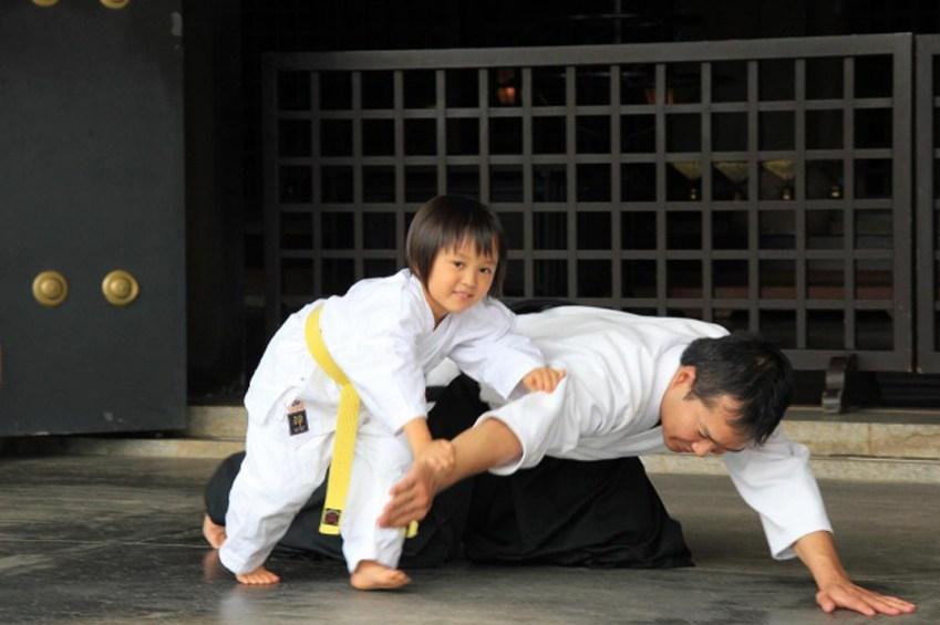самбо польза и вред для ребенка
