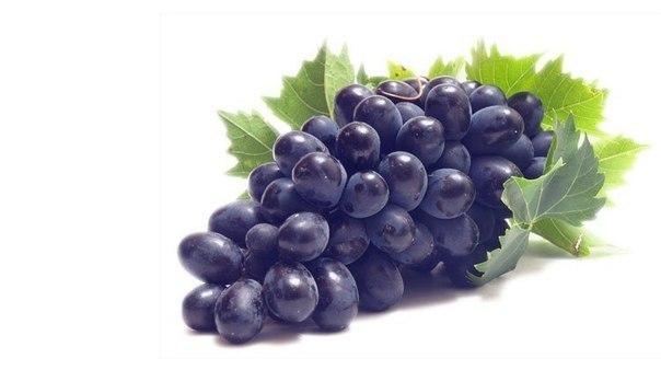 виноград польза и вред для печени