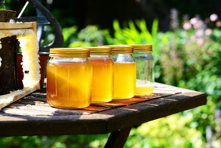 все виды меда полезные свойства и противопоказания