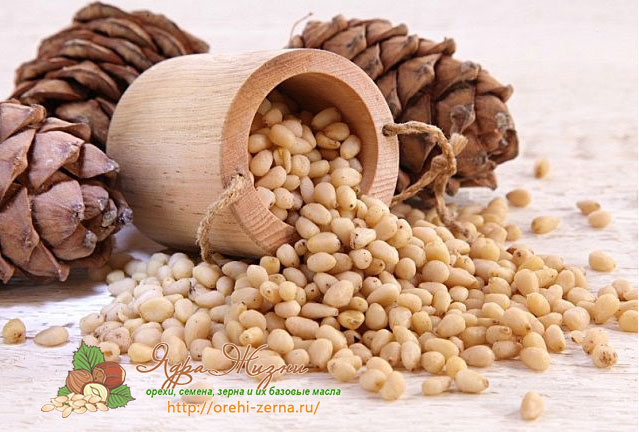 ядра кедрового ореха польза и вред