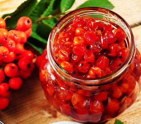 ягода рябина красная польза и вред