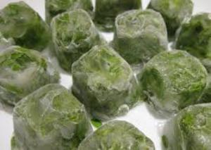 зеленый лук полезные свойства и противопоказания для женщин