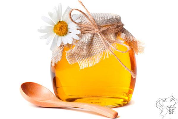 ламинария сушеная полезные свойства для лица и тела