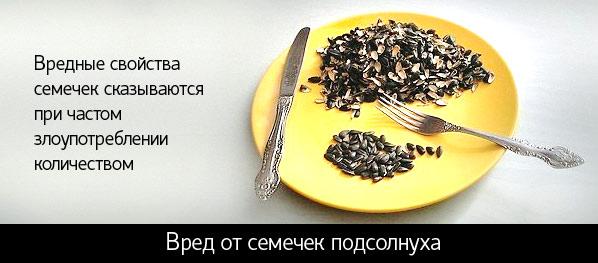 семечки подсолнуха польза и вред калорийность