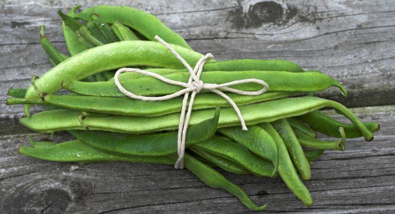 консервированная фасоль польза и вред при похудении