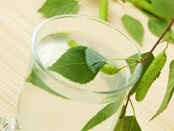 березовый сок польза и вред хранение