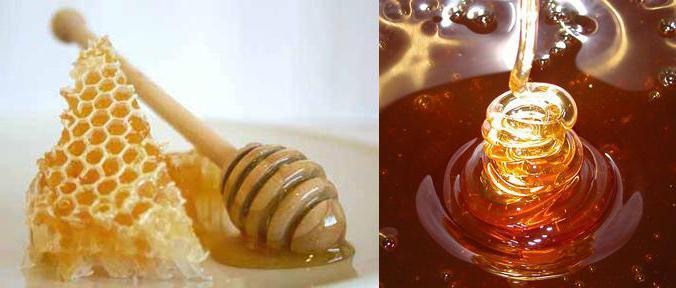 чем полезен грецкий орех и мед для мужчин