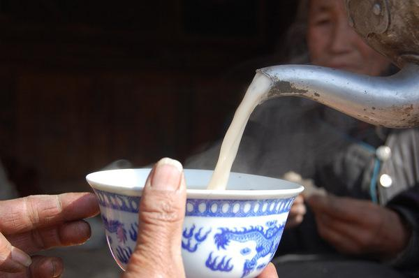 чем полезен молочный гриб и как его принимать