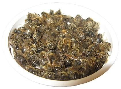 чем полезен пчелиный подмор и как его приготовить