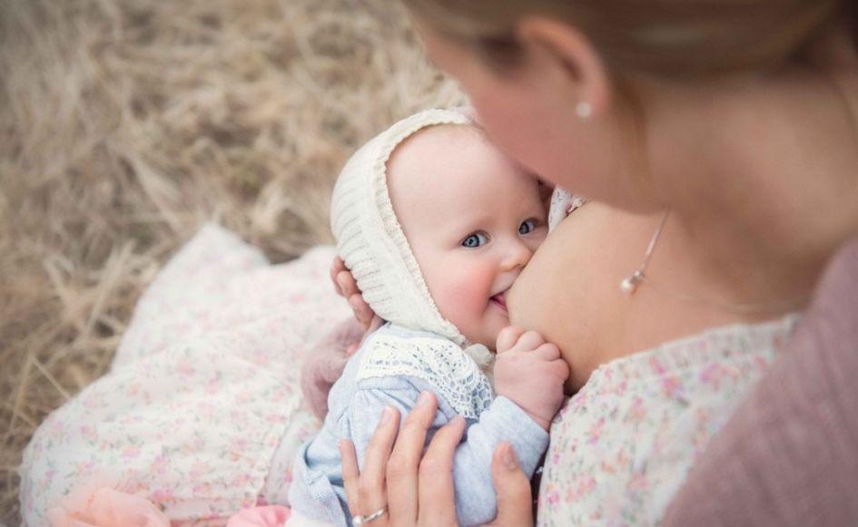душица полезные свойства и противопоказания для женщин и мужчин