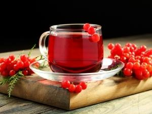 калина красная полезные свойства и противопоказания с медом
