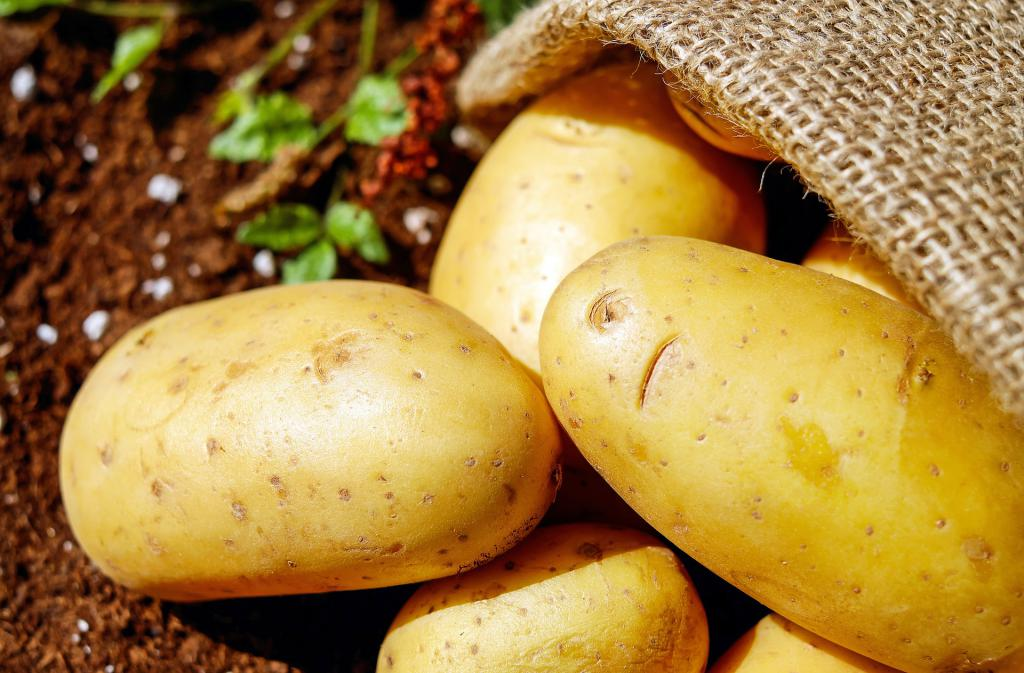 картофельный сок свежевыжатый польза и вред