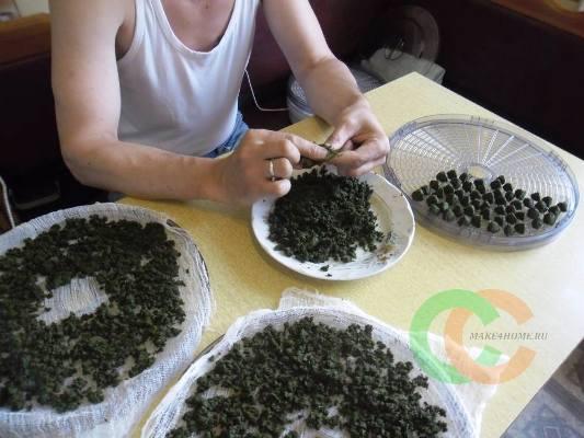 кипрейный чай польза и вред заготовка сушка