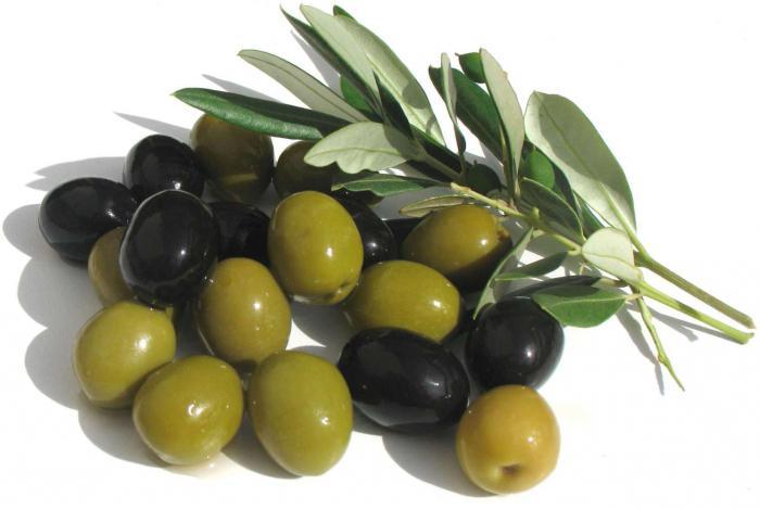 косточка маслины польза и вред для организма