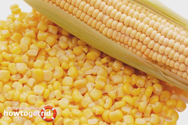 кукуруза в банке вред и польза