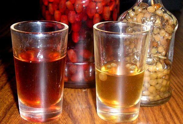 настойка на кедровых орешках на водке полезные свойства