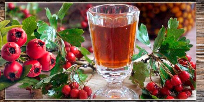 плоды боярышника полезные свойства и противопоказания для женщин