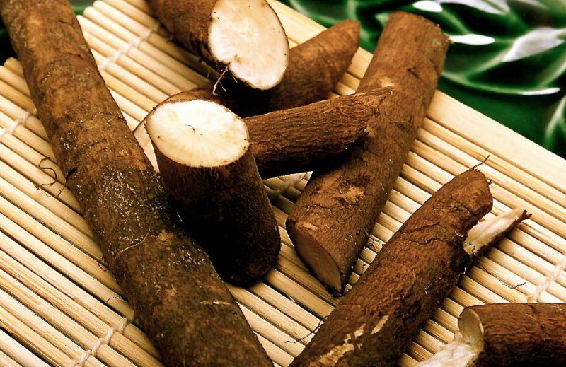 полезные свойства корня лопуха полезные свойства корня лопуха
