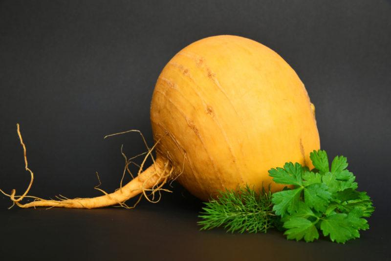 репа в сыром виде польза и вред