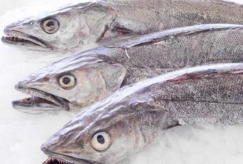 рыба хек польза и вред где водится