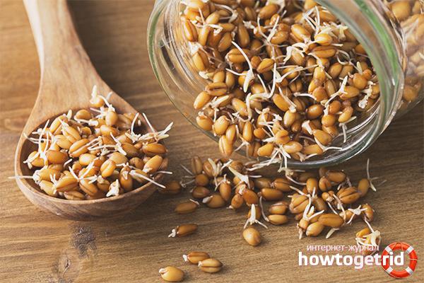 сок проросшей пшеницы польза и вред