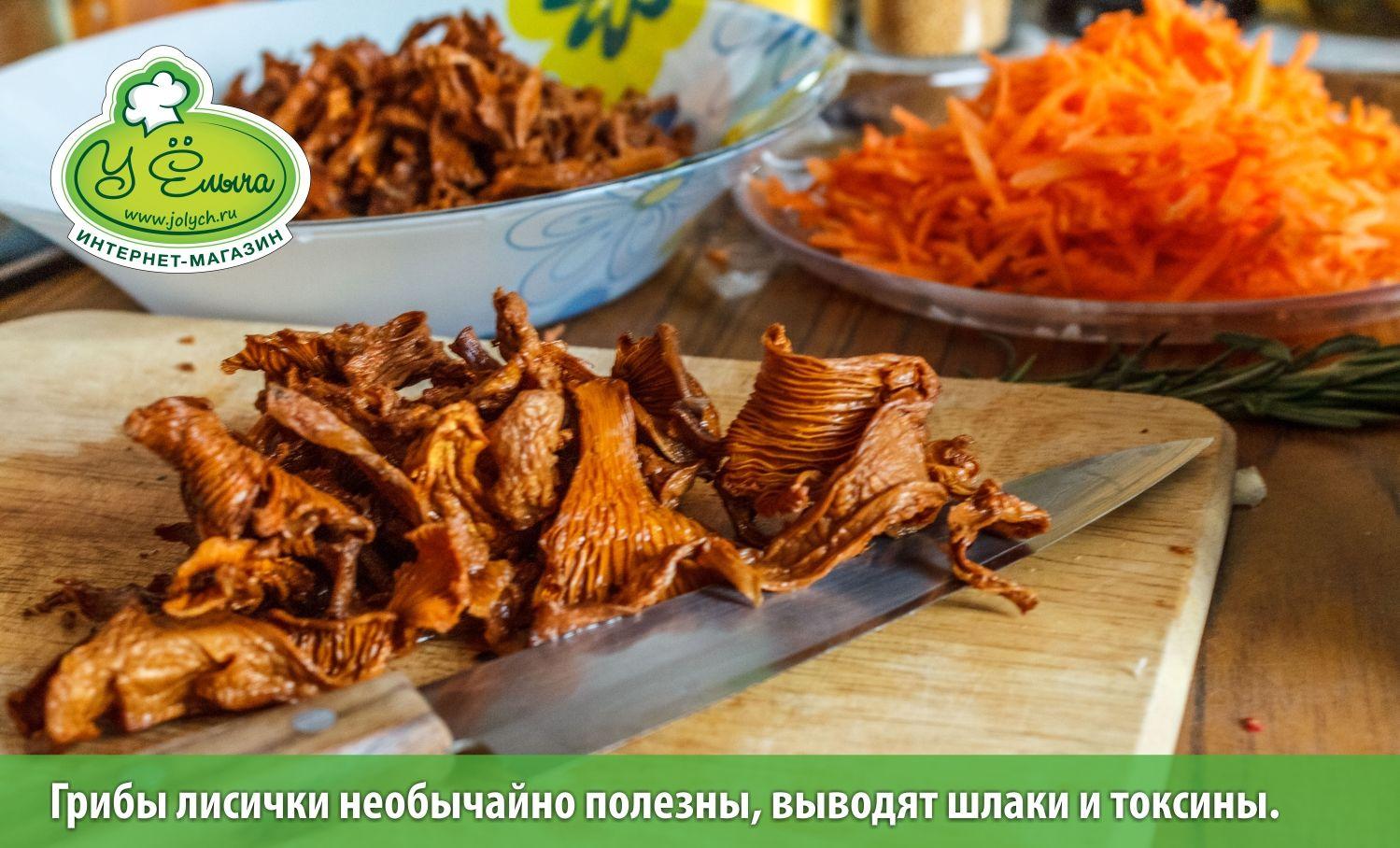сушеные грибы польза и вред для здоровья