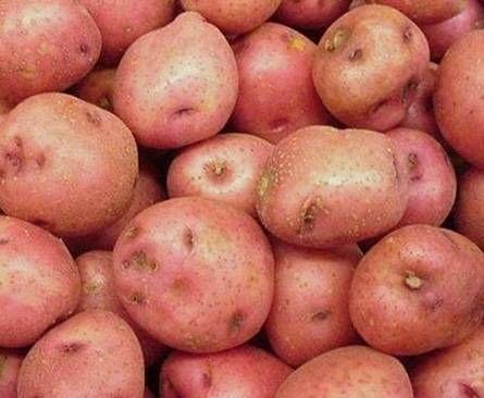 сырой картофельный сок польза и вред