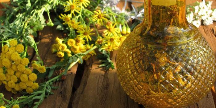 зверобой трава полезные свойства и применение чай для лечения депрессии
