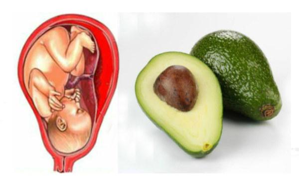 авокадо полезные свойства и противопоказания для женщин беременных