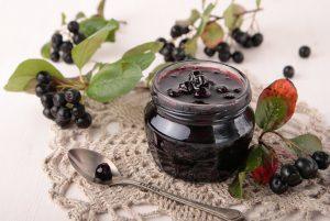 черноплодная рябина ягода полезные свойства при давлении