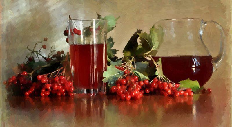 калина красная ягода полезные свойства рецепты для детей