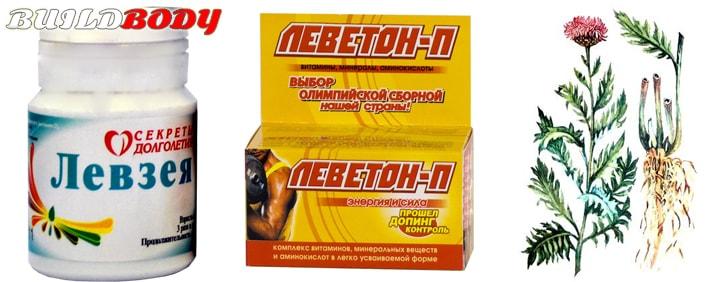 левзея сафлоровидная полезные свойства и противопоказания в бодибилдинге