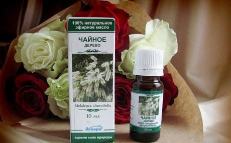 масло чайного дерева его полезные свойства и применение