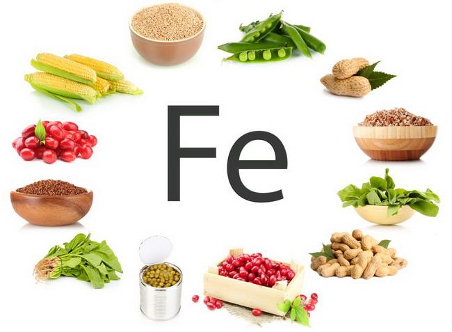 польза и вред вегетарианства научные исследования