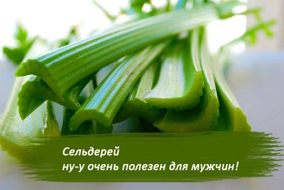 сок сельдерея полезные свойства и противопоказания для мужчин