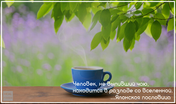 чай для глаз польза или вред
