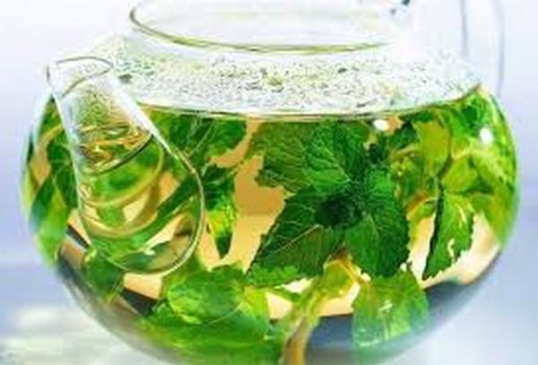 чем полезна свежая мята для женщин в чае