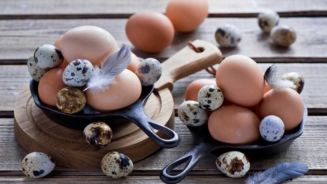 чем полезны перепелиные яйца сырые для мужчин