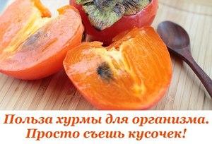 что за фрукт хурма и чем он полезен