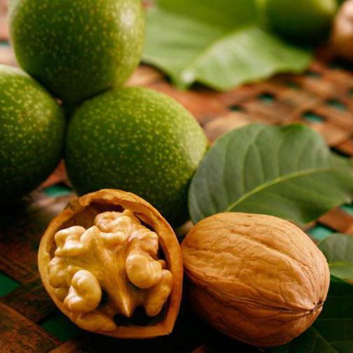 грецкий орех калорийность вред и польза