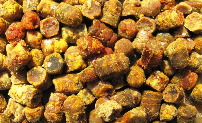 перга пчелиная полезные свойства как принимать при туберкулезе