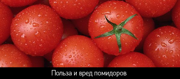 полезные свойства помидора для человека и противопоказания