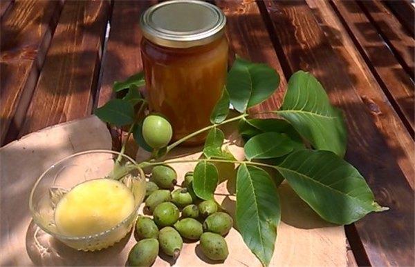 полезные свойства зеленого грецкого ореха и меда