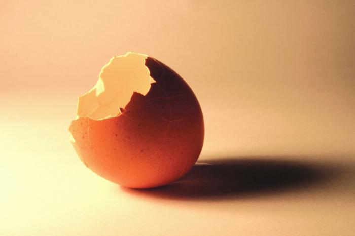 толченая скорлупа яиц польза и вред