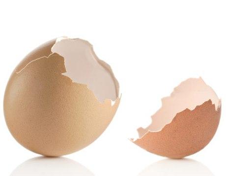 чем полезна скорлупа от яиц для человека