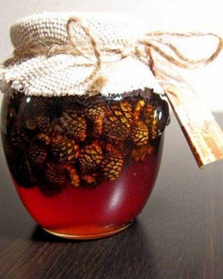 настойка сосновых шишек на спирту чем полезна