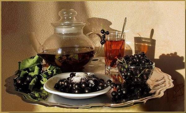 чай с черной смородиной польза и вред