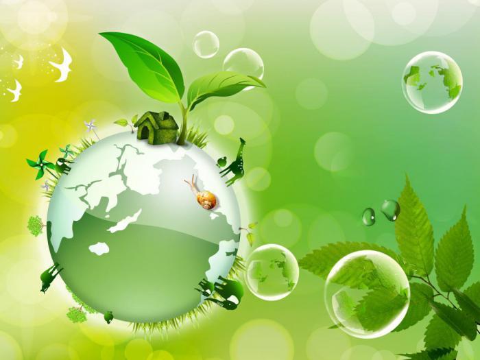 что полезного можно сделать для сохранения природы